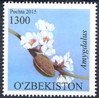 1134-1136.Серия почтовых марок «Флора Узбекистана»